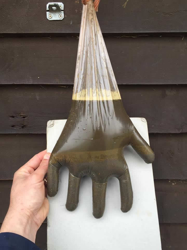 Glove full of sand ingestion from Equine Veterinary Centre