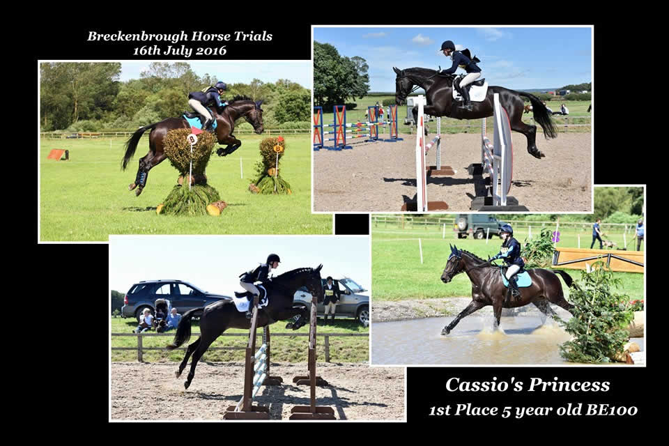 Breckenborough Horse Trials