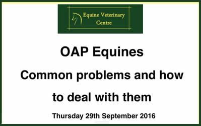 OAP horses next client talk 29th September