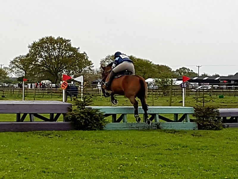The Area 16 Riding Clubs Show Cross