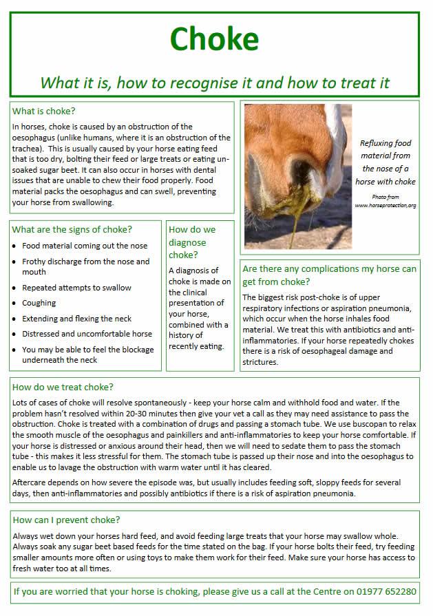 choke information sheet