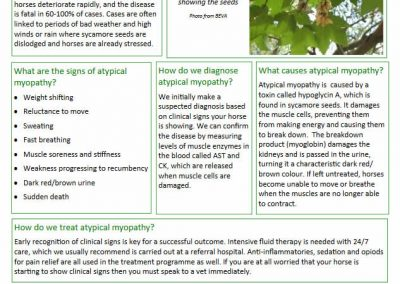 Atypical Myopathy