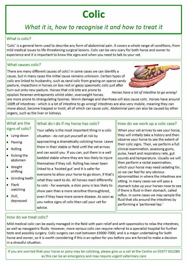 colic information sheet
