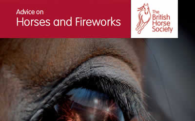 Firework season can be very stressful for our horses
