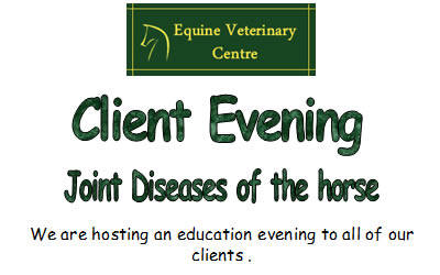 Client Evening Joint Diseases of the Horse